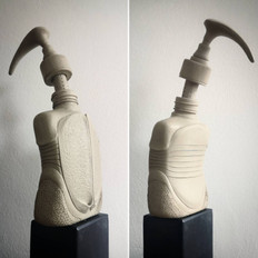 Lockdown experiments: Beetle bottle