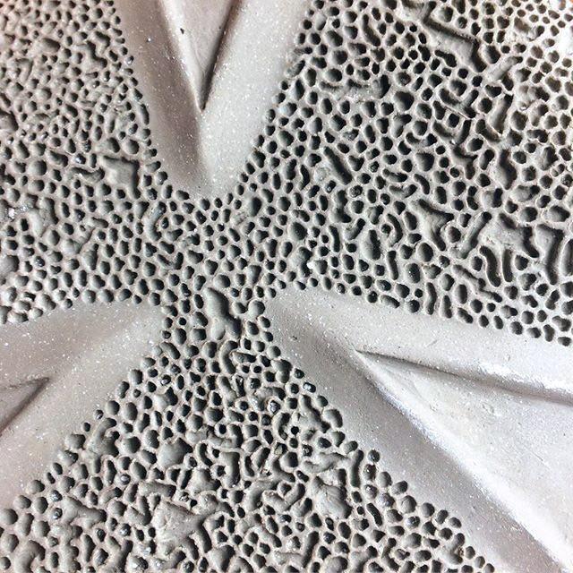 Japanese aralia detail