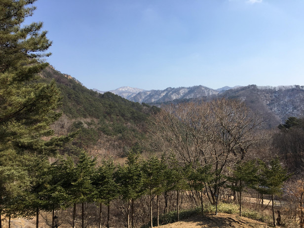 In the Korean Mountains