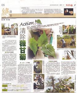 2013-經濟日報訪問-清除薇甘菊