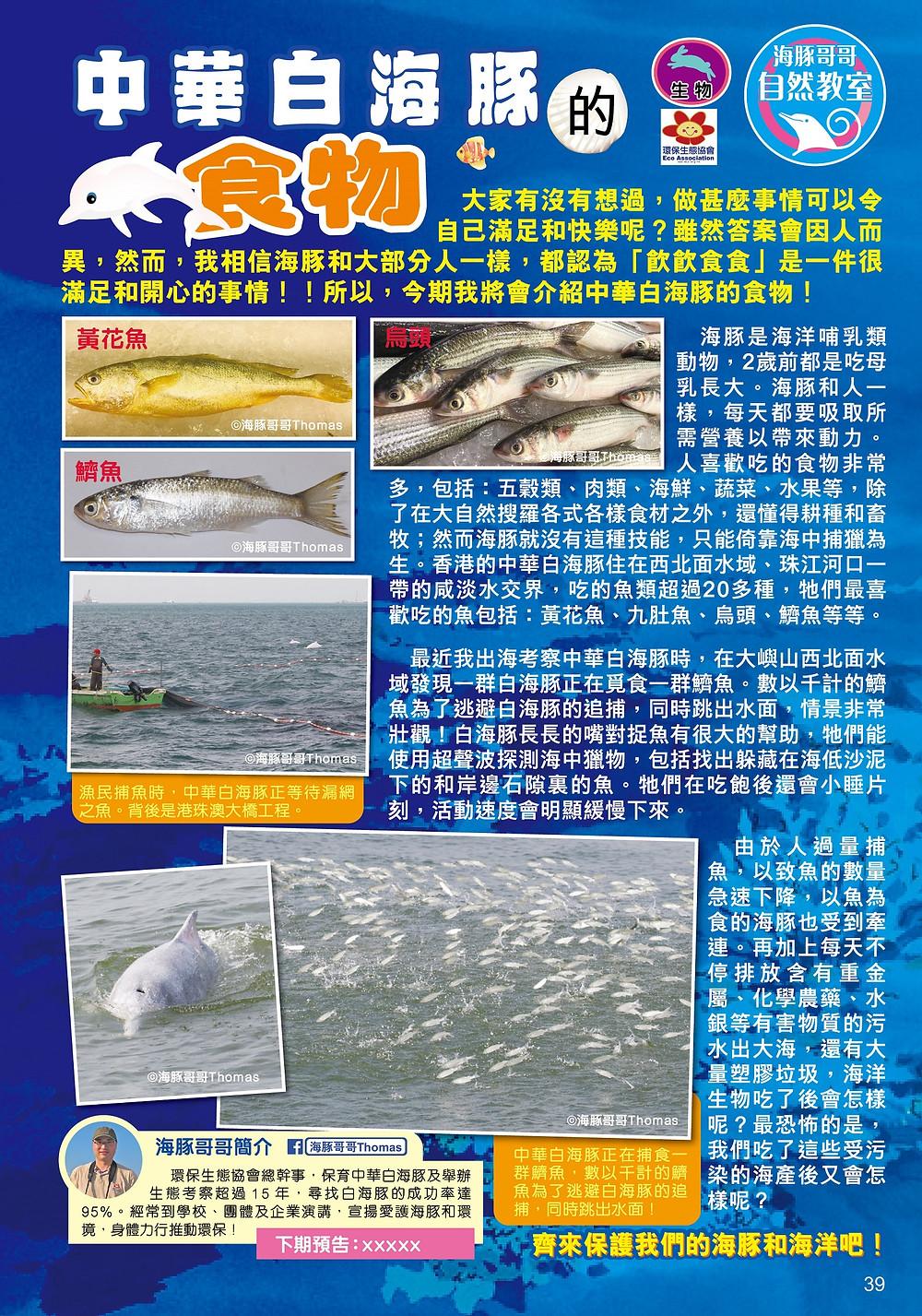 海豚哥哥 Mr Dolphins 《兒童的科學》雜誌專欄作者,原文刊登於《兒童的科學》第146期,中華白海豚食甚麼