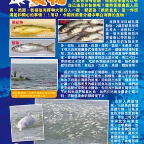 中華白海豚的食物