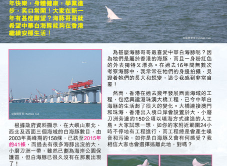 保育中華白海豚 (三):海洋縮小、食物銳減