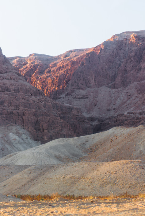 Israeli Desert II