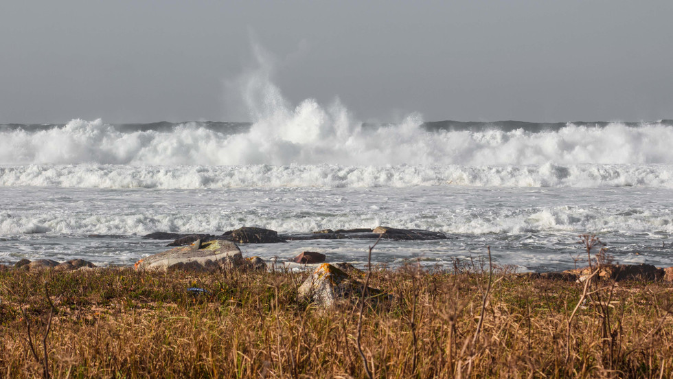 Moledo Wave I