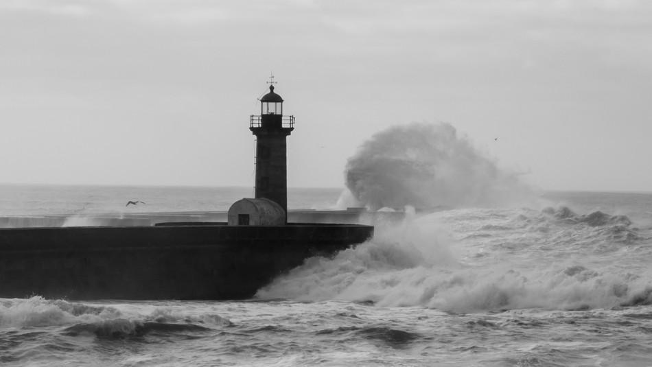 Oceanside Wave
