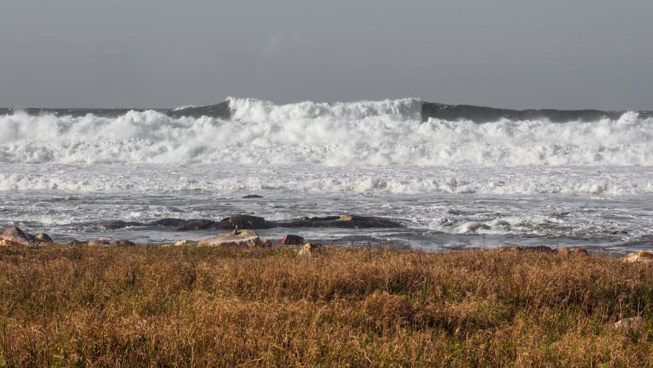 Moledo Wave II