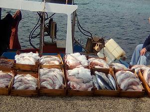 Pescato.jpg
