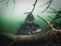Peter Stetina, Freedive, Freediving, Freitauchen, Apnoe, Anaerobic Art, Unterwasserfotografie, Freedive Kärnten, Längsee