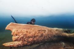 Peter Stetina, Freedive, Freediving, Freitauchen, Apnoe, Anaerobic Art, Unterwasserfotografie, Freedive Kärnten, Weissensee, Eistauchen, Ice Diving,