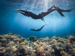 Peter Stetina, Freedive, Freediving, Freitauchen, Apnoe, Anaerobic Art, Unterwasserfotografie, Dahab