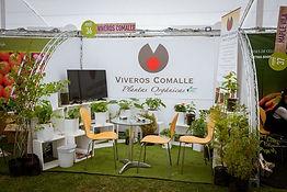 Viveros Comalle viveros frutal , forestal y hortalizas