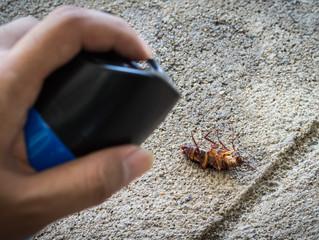 LMBPC: DIY & OTC Pest Control