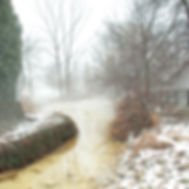 fog-at-the-pond.jpg