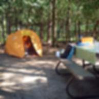 Pinery Camping