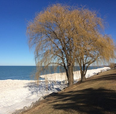 Lake-Huron-in-Winter.jpg