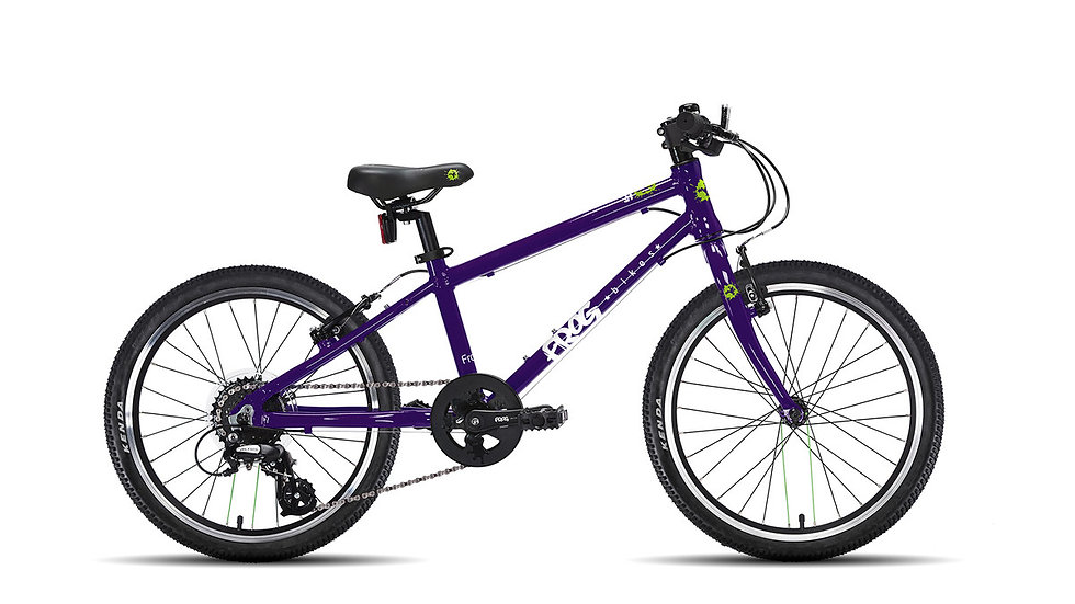 Frog 52 - Purple
