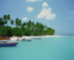 Tropical%2520Beach_edited_edited.jpg