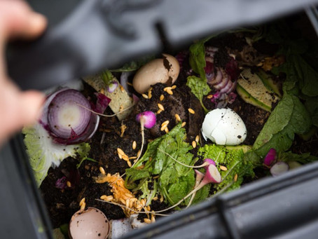 Food Composting 101
