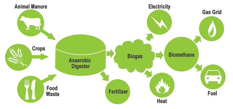bio-gas.png