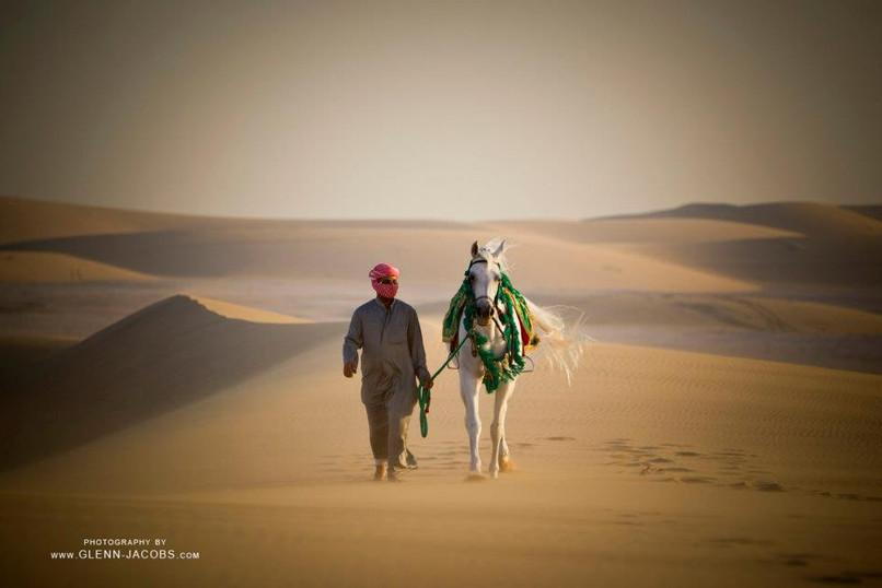 desierto yegua 2.jpg