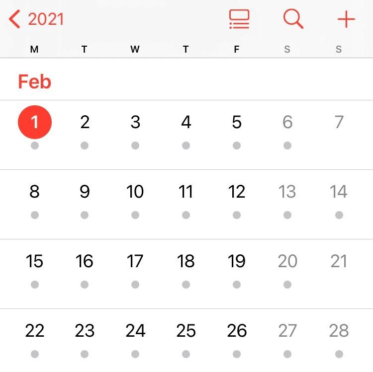 A perfectly rectangular February 2021