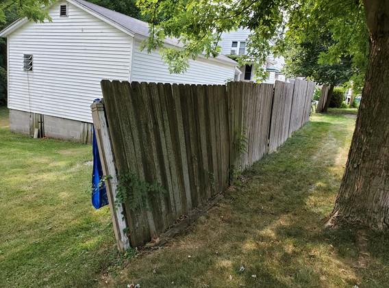 Long fence before.jpg