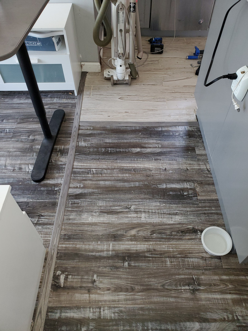 Finished dual floor transition
