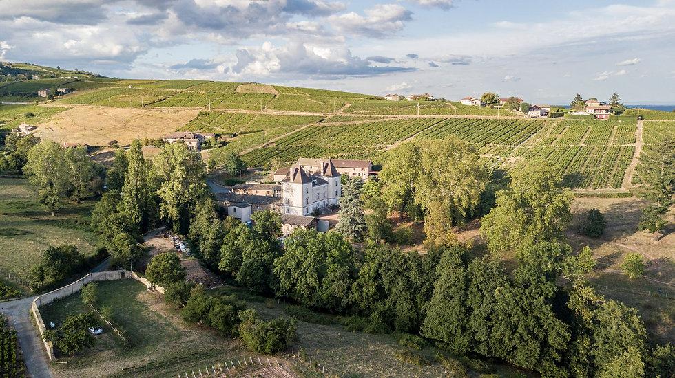 Chateau_Raousset_vignes.jpg
