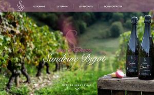 Site internet Sandrine Bigot