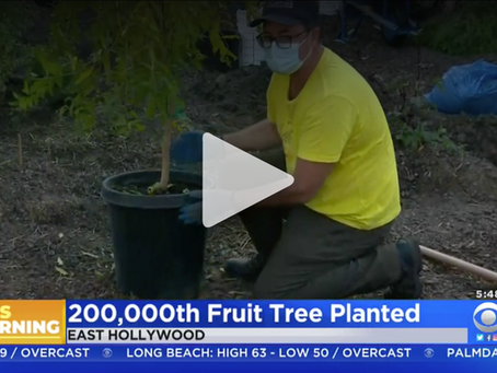Food And Hope: Group Accomplishes Goal Of Planting 200,000 Fruit Trees By End Of 2020