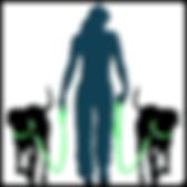 Dog Daycare Reigate