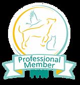Pro-Member-e1560268345797.png