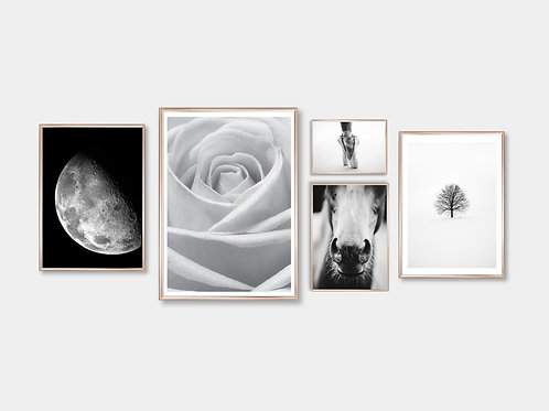 "Composition ""Black & White"""