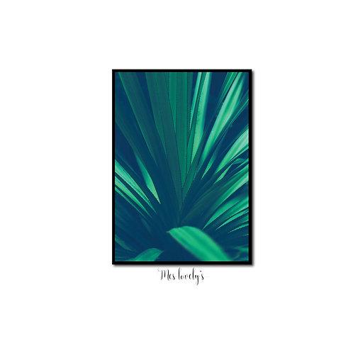 Elégantes feuilles longues
