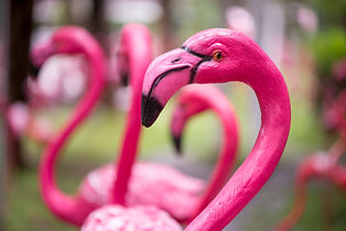 Close-up detail of a pink flamingo sculp