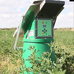 Stammers_AW_CBP_Irrigation_6.jpg