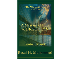 """Book Cover of """"The Ministry of Love 2016 Tour: A Message of Love to Brooklyn"""""""