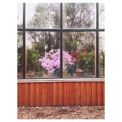 Instagram - #botanicalharden #moscow #allthegardens