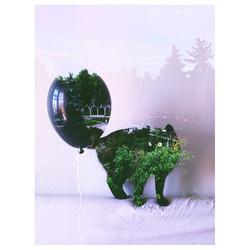 Instagram - #experimentalgreens #blackmina #somethingwentwrong #artscene