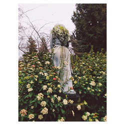 Instagram - #busted in #copenhagen, part three