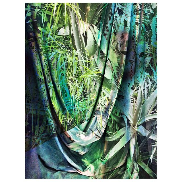 Instagram - #doubleexposure #experimentalgreens #abstractgreen