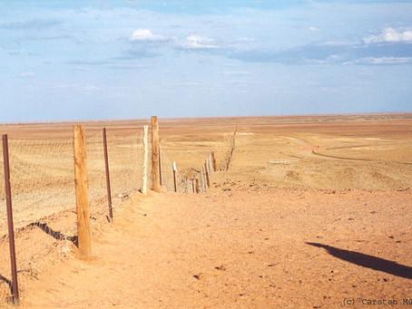 Världens längsta staket