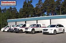 bilar-skandinaviska.jpg