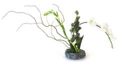 Cannabis Ikebana.jpg
