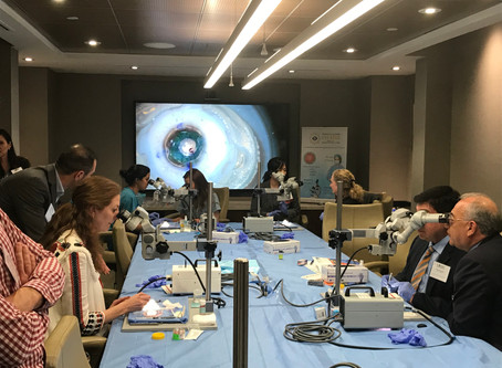 Curso de córnea y cirugía refractiva en el Bascom Palmer Eye Institute