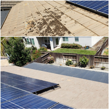 Solar Exclusion Before & After