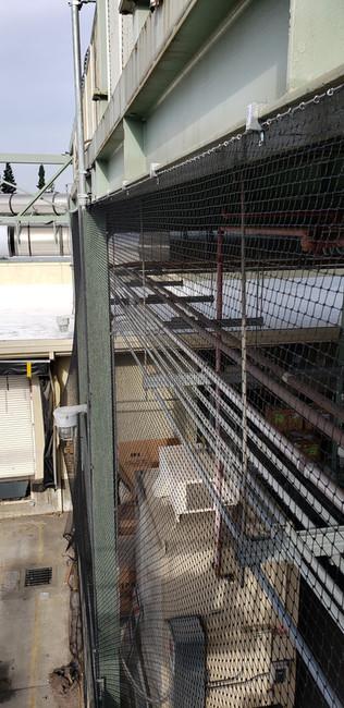 Commercial Bird Netting