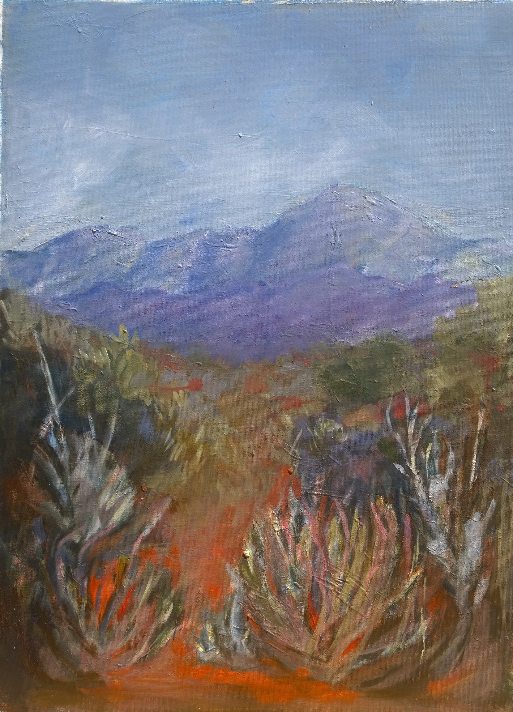 Janet Dixon- Azure day in the Klein Karoo 45x60cm Acrylic on canvas