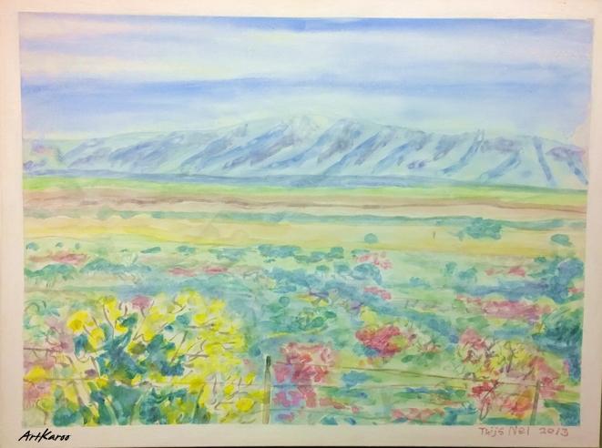 Landscape Near Zebra